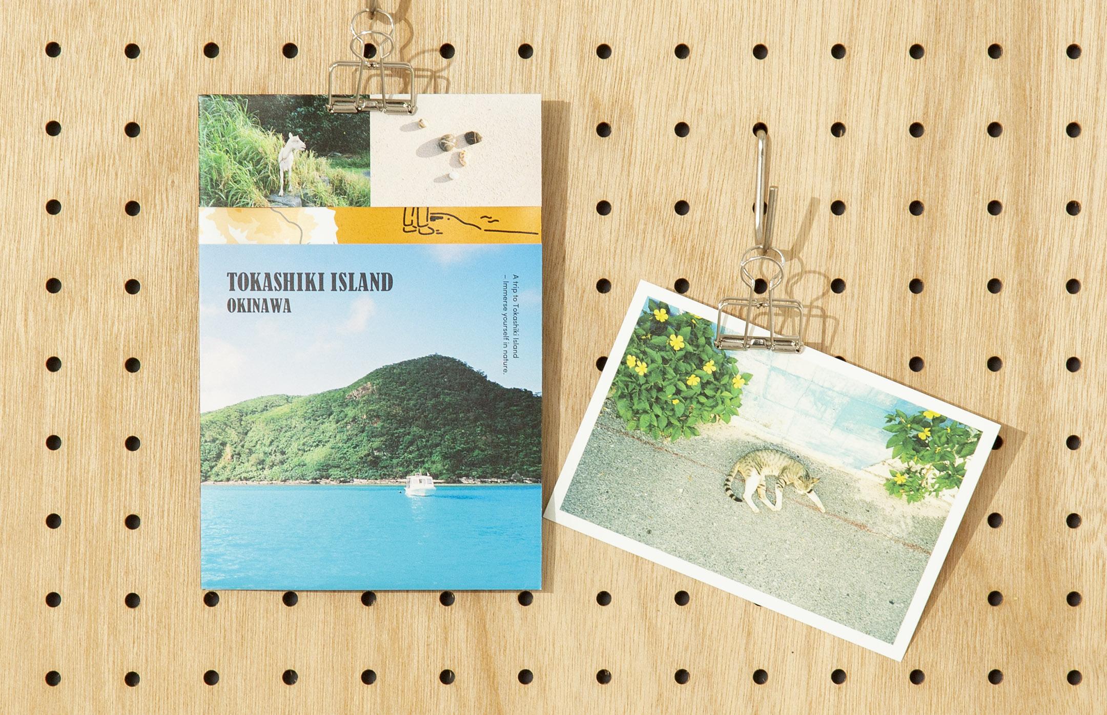 TOKASHIKI ISLAND OKINAWA